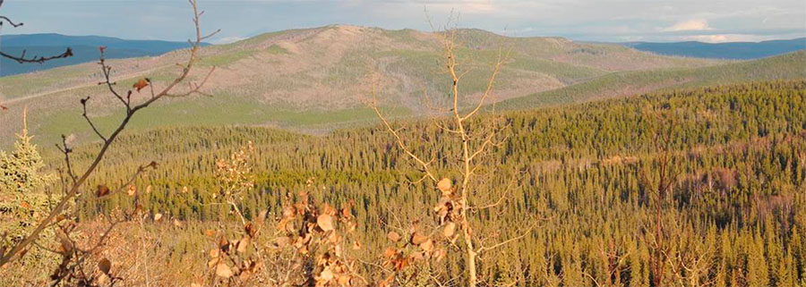 Firm Receives Exploration Permit, Announces Start of Yukon Field Program