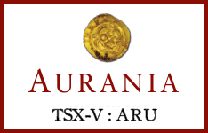 Learn More about Aurania Resources Ltd.