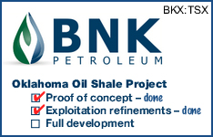 BNK Petroleum Inc.