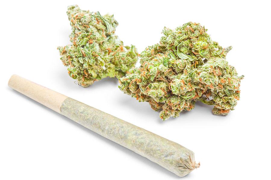 Cannabis preroll