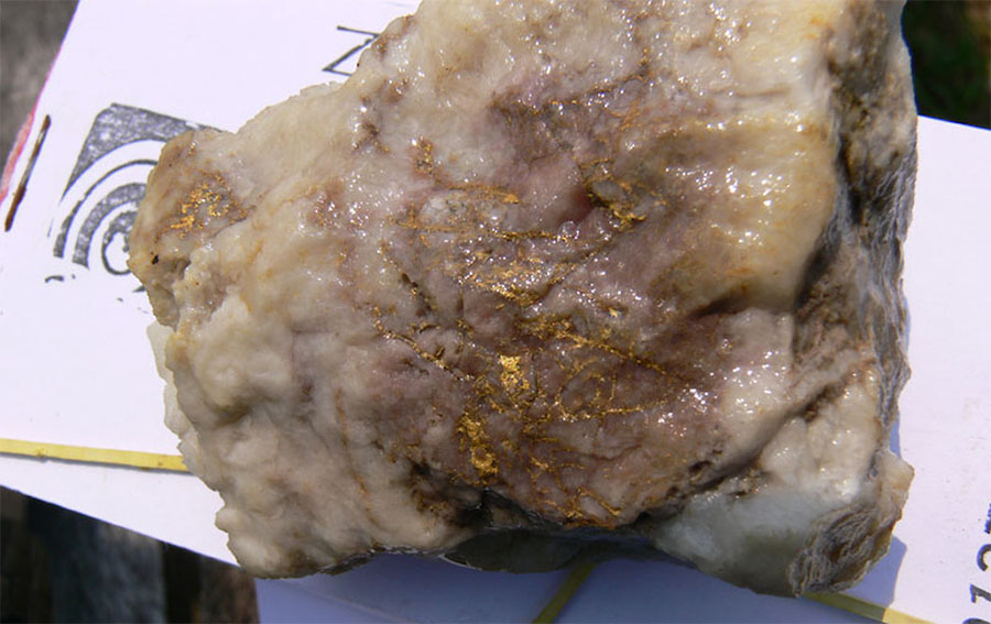 Native Gold in Quartz, Central Zone, Cuiú Cuiú