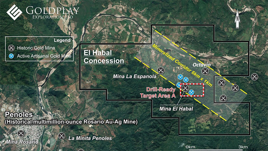 Initial Drilling Finds Continuity of Gold Mineralization at Mexico Project
