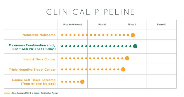Oncosec Clinical Pipeline