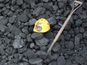 coalpileshovel175