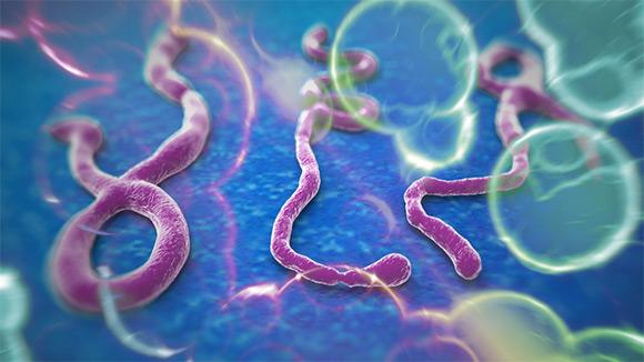 ebola580