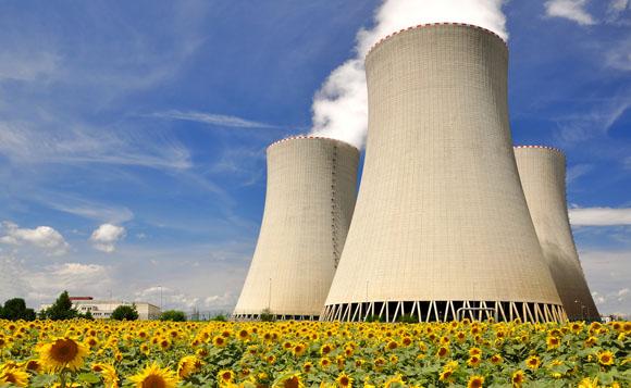 nuclearplantdaisies580