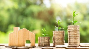 gold coins money green plants growing house